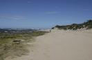 Tour am südlichen Kap von East London nach Kapstadt_100